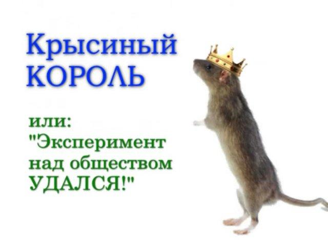Кадры Кремля. Крысиный король