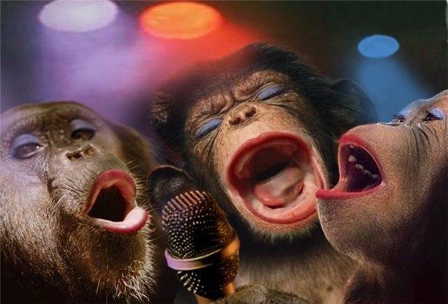 2016. Новогодний стол для обезьяны