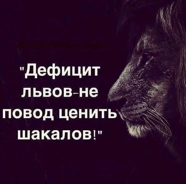 Выборы 2016. Ленка Вторсырьё и балабол Игорёк