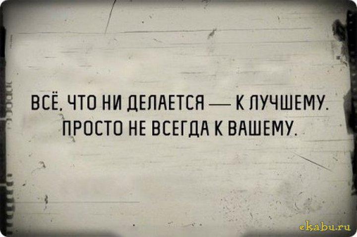 Архангельские ученые говорят…