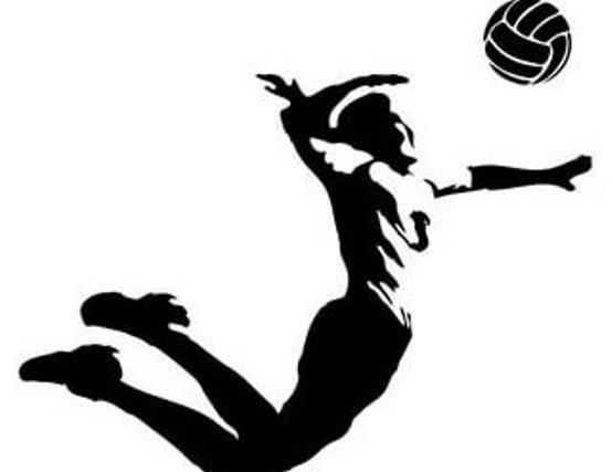 Турнир по волейболу среди любительских команд