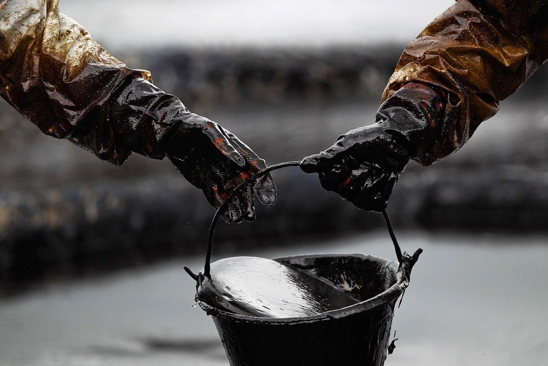 Больше тонны бесхозной нефти нашли под Архангельском.