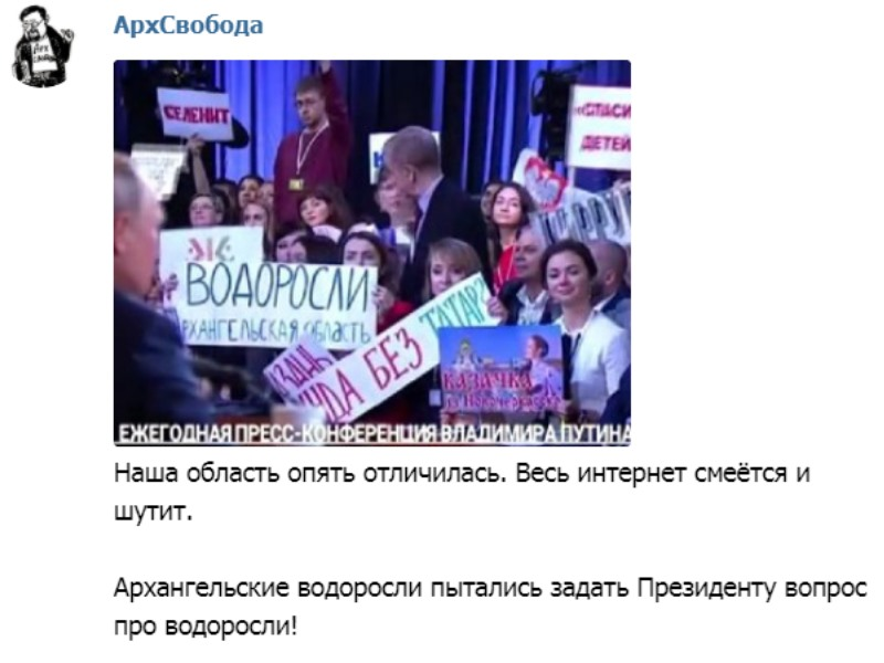 Архангельск. Нарушения с водорослями