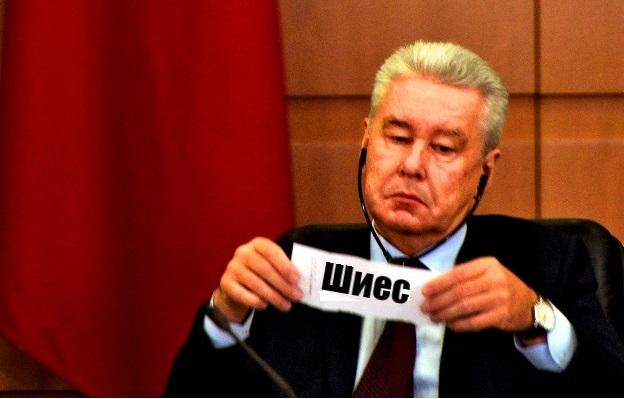 Мусорная война в Арктике и мэр Москвы