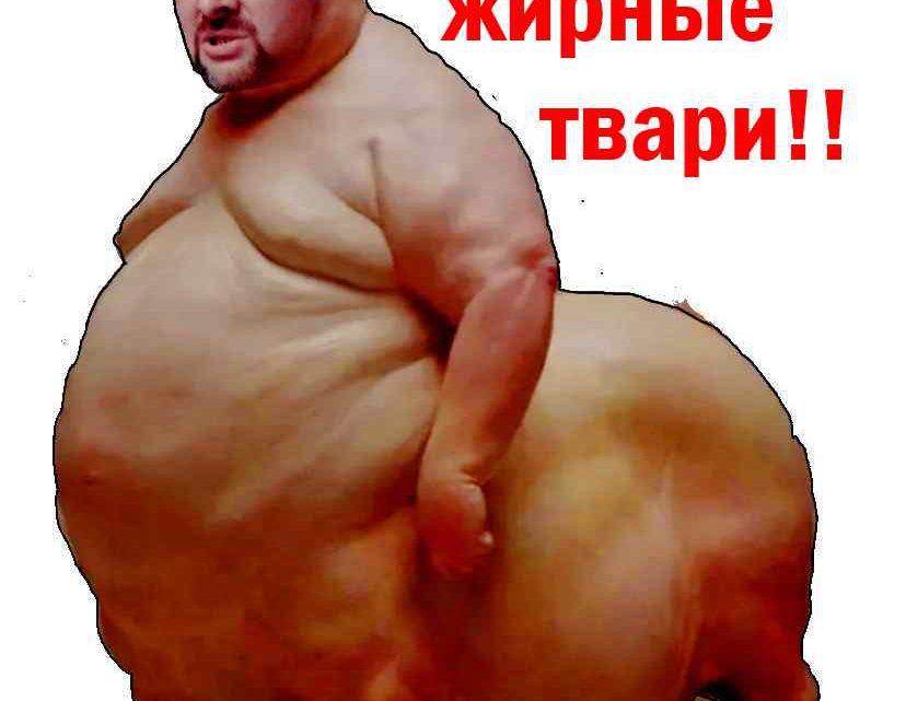 Архангельская эпидемия. Делитесь, жирные твари!