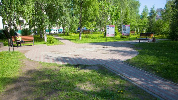 Новости сети. В Архангельске вытоптали все газоны