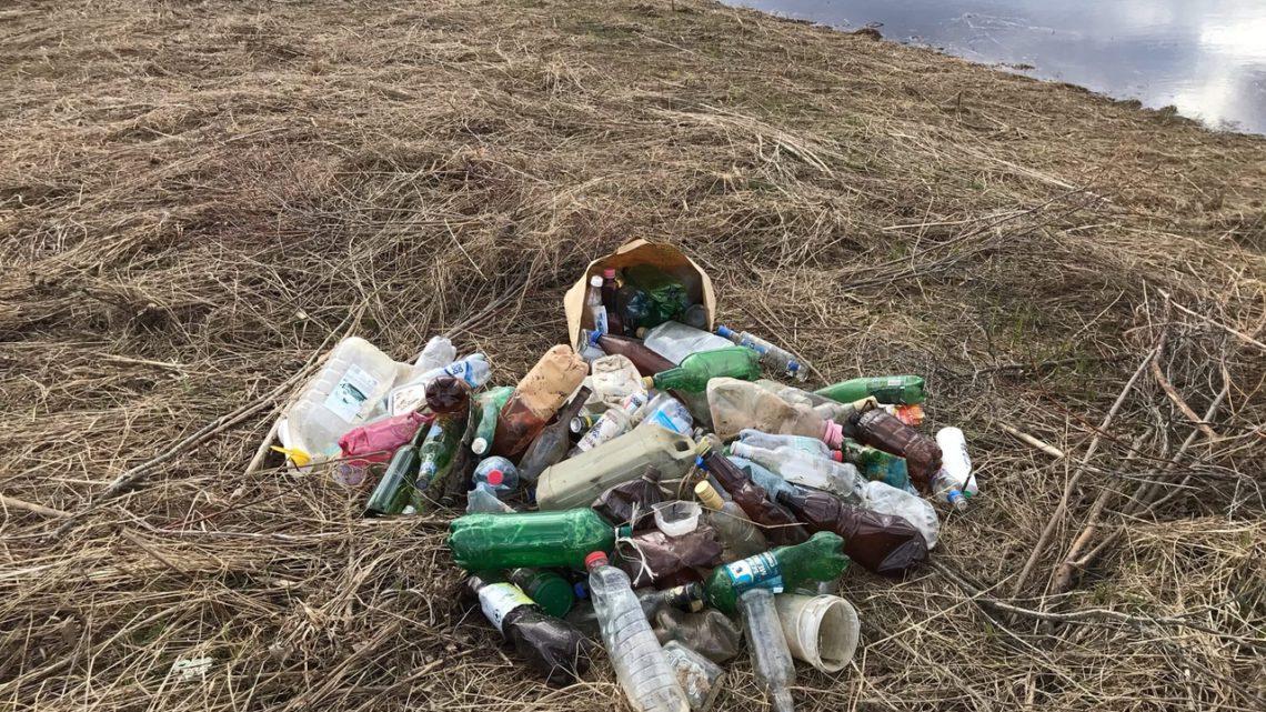 В Поморье стало меньше мусора?