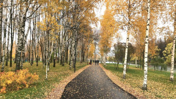 В Архангельской области станет теплее. Возможно